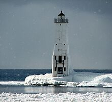 Winter's Light by Lynne Bryan Photography