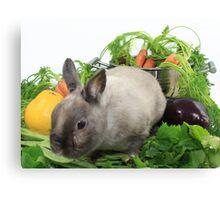 Rabbit with Vegetables Canvas Print