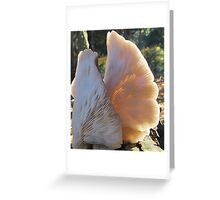 GILLS, Challenge entry. Greeting Card