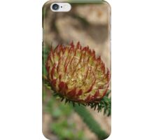 Darwinia neildiana iPhone Case/Skin