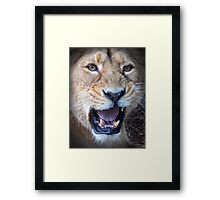 Don't Come Any Closer....  Framed Print