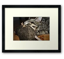 In The Jaws Of Death Framed Print