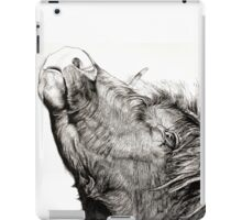 Highland Bull iPad Case/Skin
