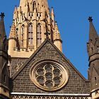 St Patricks in Melbourne by kalaryder