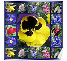 Riot of Colour Spring Flowers Collage Poster