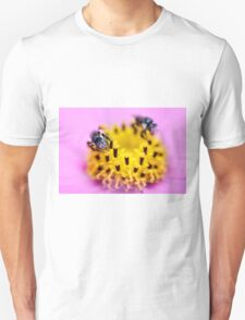Native bee on a pink flower T-Shirt