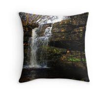 Summerhill Force Throw Pillow