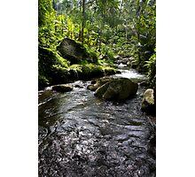 gunung kawi, bali Photographic Print