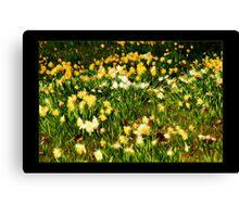Spring Flowers II Canvas Print