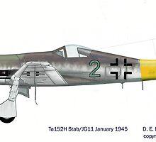 Focke Wulf Ta152H-1a Jg11 1945 by greywolf42