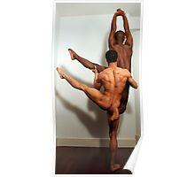 Sculpture 6 Poster