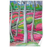 Rhododendron Gardens Poster