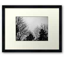 Our Park: McKinley Park in Tacoma 20110313b Framed Print