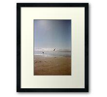 Cannon Beach Seagulls Framed Print