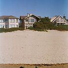 Cannon Beach Single Seagull by Allie Ludvigson