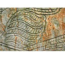 Aboriginal rock carving 1 Photographic Print