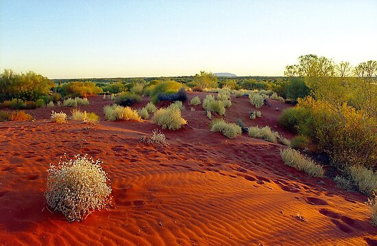 Red sands of the outback , Australia by Alberto  DeJesus