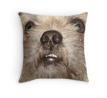 JACK THE WOOKIE Throw Pillow