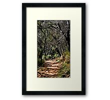 unknown path Framed Print