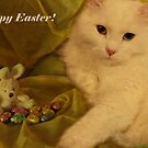 The easter kitty by Marie-Eve Boisclair