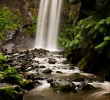 Hopetoun Falls, Otway National Park, Victoria, Australia by Shelley Warbrooke