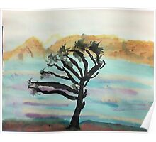Very Wind Blown Torry Pine, watercolor Poster