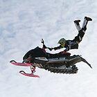 Flyin High! by Laura Hill