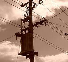 Power Pole by Joan Wild