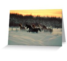 Living Free and Loving Winter Greeting Card