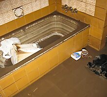 Brisbane Floods 2011 - Aftermath - Bath Tub by Neil Ross