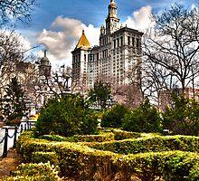 New York City Hall Park by Mari  Wirta