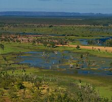 Kakadu wetlands 4 by Ian Fegent