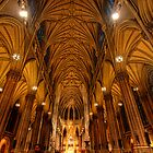 St. Patricks Cathedral by Mari  Wirta