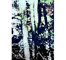 appalachia louise Photographic Print