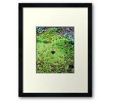 Mossy Kingdom Framed Print