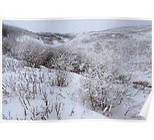 Snowy hills II Poster