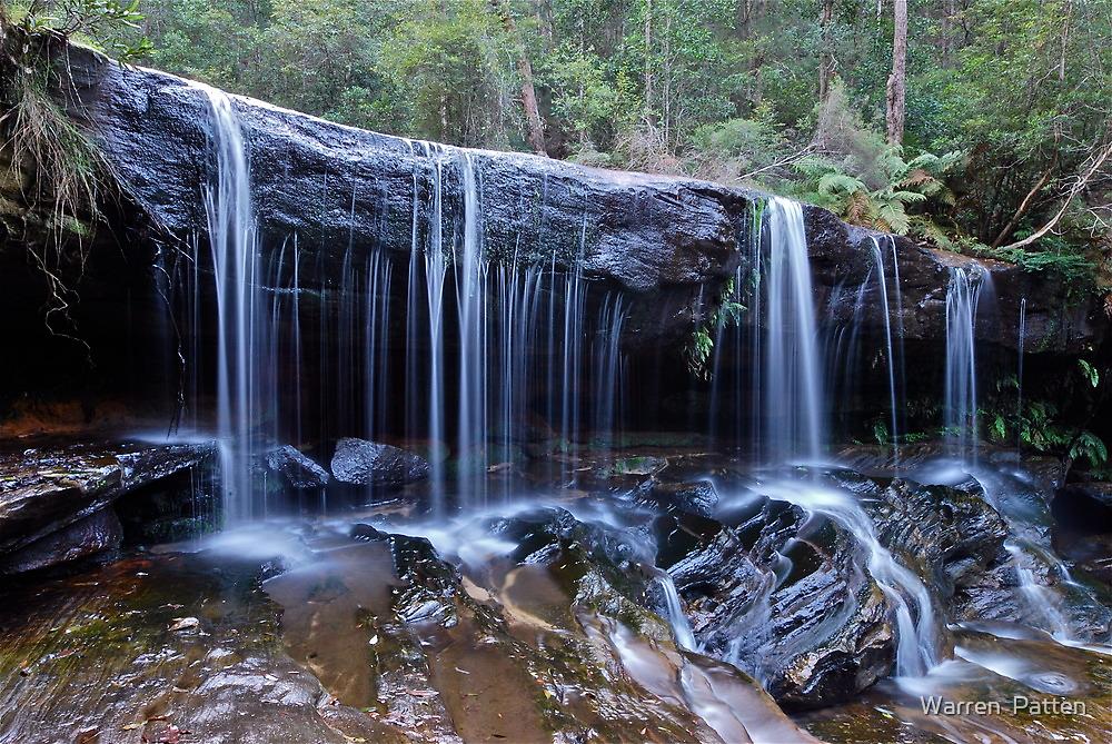 Somersby Falls..2-4-11.. by Warren  Patten