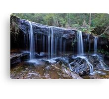 Somersby Falls..2-4-11.. Canvas Print