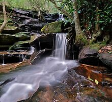 Second Falls Somersby..2-4-11. by Warren  Patten