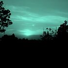 Green Glow by Dawn di Donato