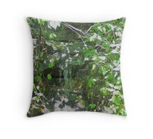 Beauty In The Little Things - Warsaw Throw Pillow