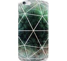 Flower Seed - Abstract CG iPhone Case/Skin
