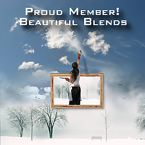 Beautiful Blends Member Banner by John Poon