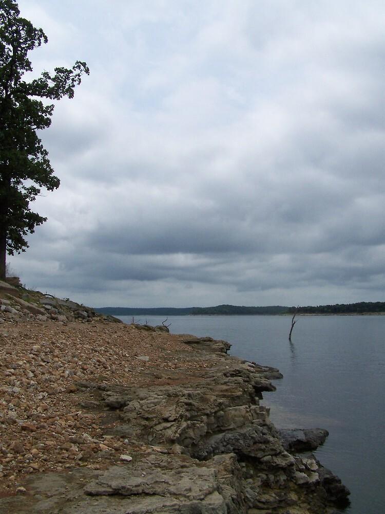 Rubble - Truman Lake by Rayna Harmon