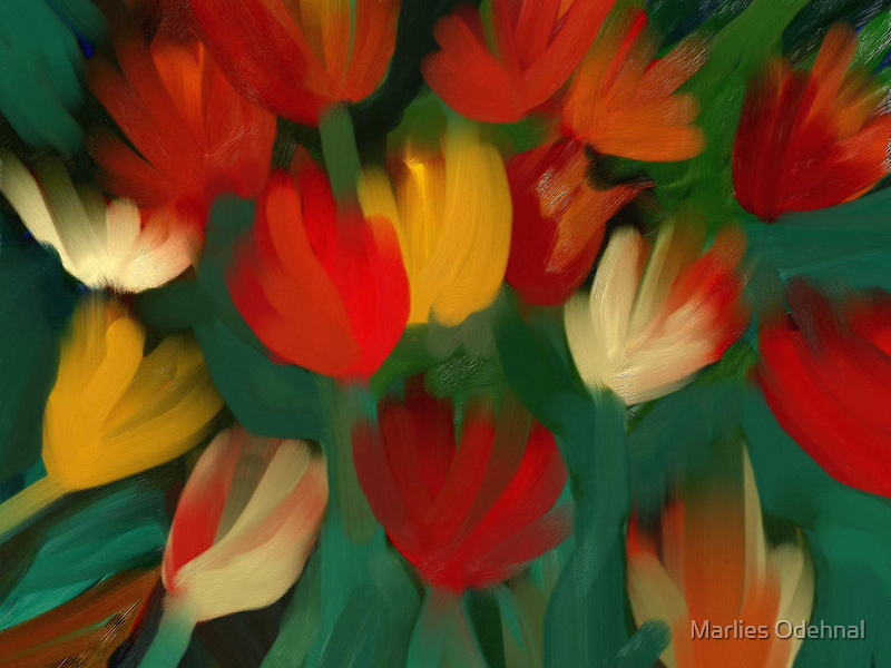 Tulips by Marlies Odehnal