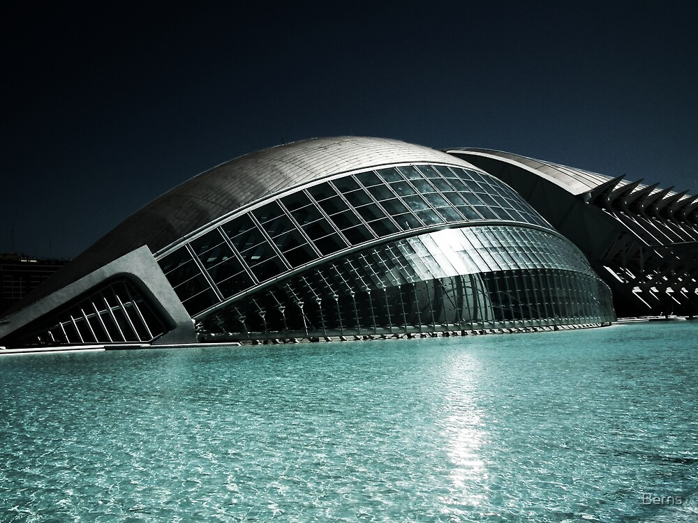 The City of Arts and Science, Valencia Spain by Berns