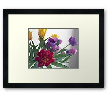 That Red Tulip Framed Print