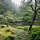 Nitobe in misty rain by Chris Allen