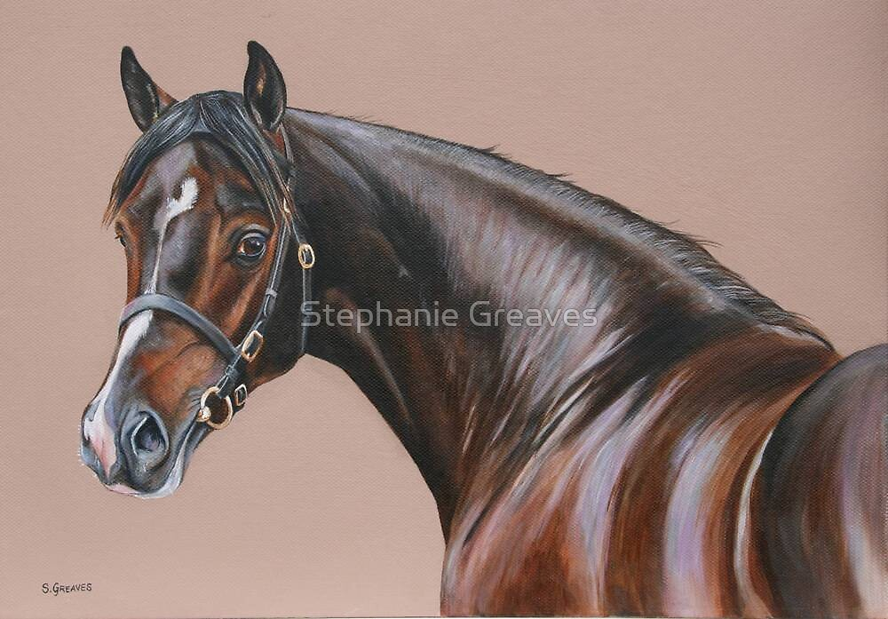The Colt by Stephanie Greaves