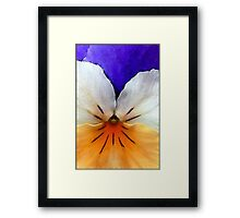 Proud to be a Pansy Framed Print